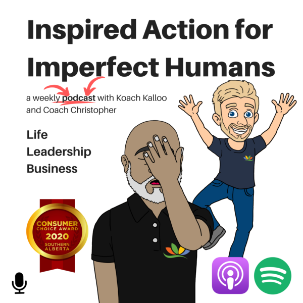 Image Link for Inspired Action for Imperfect Humans Podcast